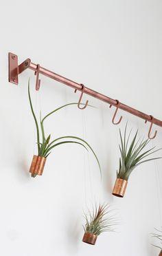 Urban Jungle Bloggers | Hanging Air Plants | Gathered Cheer