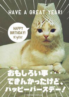 白猫のおもしろメッセージ付お誕生日お祝い画像