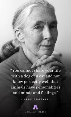 """Jane Goodall Animal Rights Quote """"You cannot share your life with a dog or a cat and not know perfectly well that animals have personalities and minds and feelings"""" Dog Quotes, Words Quotes, Wise Words, Life Quotes, Sayings, Jane Goodall, Animal Rights Quotes, Vegan Quotes, Animals And Pets"""