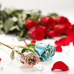 DeFaith Real Rose Gold Dipped, Forever Gifts for Her Valentines Day Anniversary Wedding and Proposal, Attractive Luster and Natural Shape - Teal Blue with Moon Stand Valentines Gifts For Her, Valentines Day, Gold Dipped, Natural Shapes, Casual Boots, Teal Blue, Artificial Flowers, Cufflinks, Anniversary