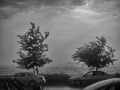 Photo listed in Black and White 1 Repics and 13 likes. Windy Weather, Photo Black, Street Photography, Black And White, Outdoor, Outdoors, Black N White, Black White, Outdoor Games