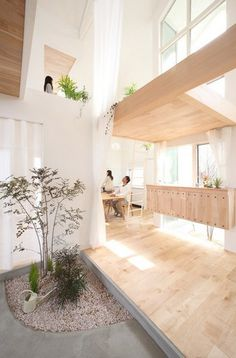 kofunaki house - When I get my own place, I want one like this. Lots of sun and a modern living space that does not look fragile/industrial.