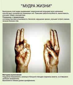 Мудры— йога для пальцев (10 основных позиций)