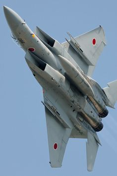 The Mitsubishi Eagle is a twin-engine, all-weather air superiority fighter based on the McDonnell Douglas Eagle in use by the Japan Air Self-Defense Force (JASDF). The was produ… Ww2 Aircraft, Fighter Aircraft, Military Jets, Military Aircraft, Air Fighter, Fighter Jets, Flying Vehicles, F4 Phantom, Birds In The Sky