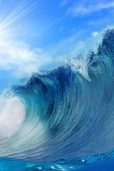 Another fabulous wave.