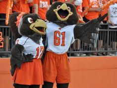 Bowling Green, Ohio home to the Bowling Green State University and our beloved mascots Freddy and Frieda Falcon. #talconsup #rollalong #orangeandbrown