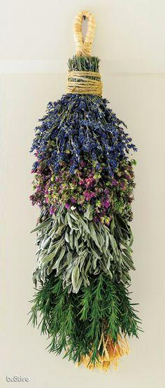 Lavanda, lavandinha! pega essa florzinha, chama a sálvia - sua vizinha e levem ao alecrim notícias do amor dele - tão distante ele anda!!!