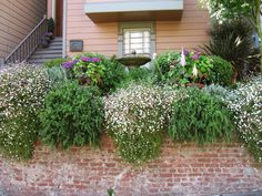15 Fabulous Front Yards from HGTV Fans