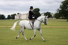 Learn to ride side saddle