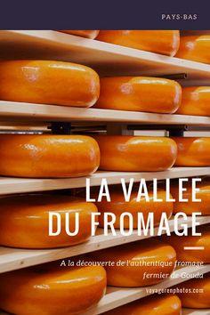Partir à la découverte de la production du véritable fromage fermier de Gouda aux Pays-Bas