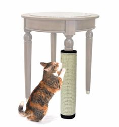 Cheap cat scratcher, Buy Quality cat scratch directly from China pet toys cat Suppliers: wholesale pet cat dog supplies pet cat Toys Sisal Hemp cat scratch mat board bed Dog Toys Pet Toys cat scratcher Cat Dog, Cat Paws, Diy Cat Scratching Post, Gatos Cat, Sisal Carpet, Cat Climbing, Cat Scratcher, Furniture Legs, Furniture Price