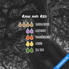 Raw and Red - Essential Oil Diffuser Blend