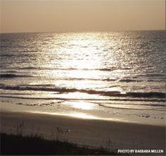 North Myrtle Beach, SC. My second home, always in my heart!
