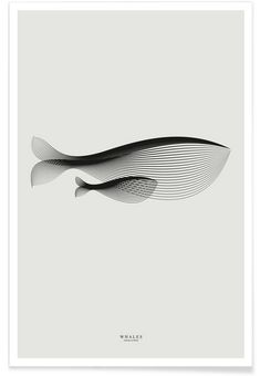 Animals in moiré | Whales as Premium Poster by Andrea Minini | JUNIQE