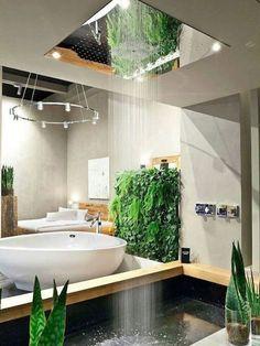 Bath with a Rainforest vibe.