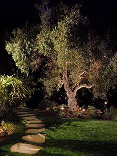 Path and Lighting