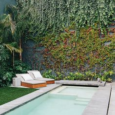 This rooftop courtyard of a Mexico City home is lined with a verdant mix of indigenous plants, including banana trees, palm trees, lion's claw, Mexican breadfruit, and native vines.
