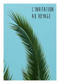 L'invitation au voyage, by Flora David