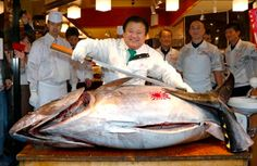 Sushi restaurateur Kiyoshi Kimura paid 7.36 million yen (about $70,000) for a 507 pound (230 kilogram) bluefin tuna in the year's celebratory first auction at Tokyo's Tsukiji market on Sunday, just one-twentieth of what he paid a year earlier despite signs the species is in serious decline.