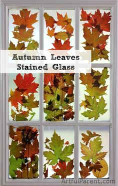 Autumn Leaf Stained Glass - 15 Fabulous Fall Leaf Crafts for Kids Fall is a season of beautiful colors, cooler weather and for many, football. If you prefer the colors to the game, there are a number of wonderful crafts that you can do that will help Autumn Leaves Craft, Autumn Crafts, Autumn Art, Nature Crafts, Autumn Theme, Holiday Crafts, Autum Leaves, Fallen Leaves, Leaf Crafts Kids