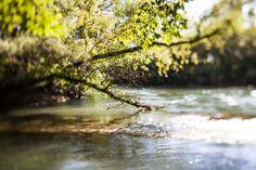 Il fiume Stella