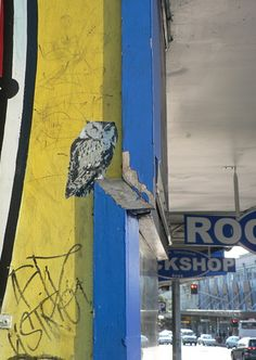 Owl street art.