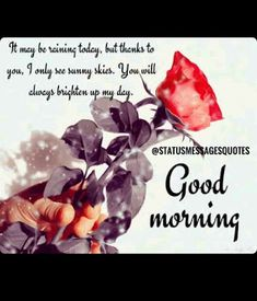Best Good Morning Status for Love, Friends and Family Funny Good Morning Greetings, Good Morning Love Text, Romantic Good Morning Messages, Beautiful Morning Quotes, Good Morning Beautiful Flowers, Morning Wishes Quotes, Good Morning Happy Sunday, Morning Quotes Images, Hindi Good Morning Quotes