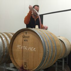 Barrel tasting of Atrolo Rouge. Merlot and Cabernet Sauvignon