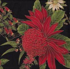 Australian Sun Waratah Wattle Native Flowers Black Quilting Fabric - Find a Fabric. Available to purchase in Fat Quarters, Half Metre, 3/4 Metre, 1 Metre and so on.