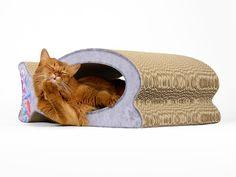 rascador para gatos - Căutare Google