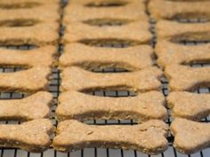 Beef Barley Dog Biscuits