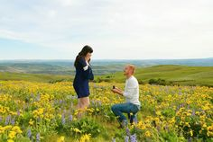 This guy proposed in the middle of a sunflower field, and it's the perfect spring engagement!