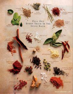 料理をもっと楽しく本格的に!覚えておきたいスパイスの種類とその特徴