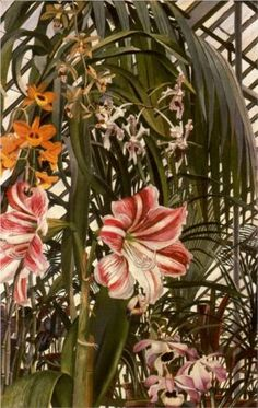 What To Search For Right Before You Purchase Your Higher Than Floor Pool Stanley Spencer Orchids, Lilies, Palms 1945 Nature Plants, Flowers Nature, Tropical Flowers, Tropical Gardens, Stanley Spencer, Natural Structures, Natural Forms, Garden Studio, Flowers For You