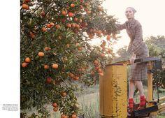 julia nobis stephen ward4 Julia Nobis is a Natural Beauty for Stephen Ward in Vogue Australia Shoot