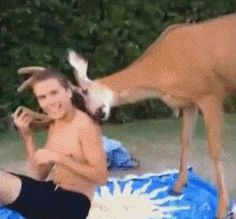 This deer who is very happy to have met a shirtless friend. | 29 Things That Are Way More Important Than Work Right Now