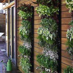 Balcony Garden Design Ideas With Living Wall Planter In Large Vertical Garden Vertical Herb Gardens, Small Gardens, Outdoor Gardens, Vertical Planting, Hanging Gardens, Vertical Garden Wall, Unique Gardens, Hanging Herbs, Modern Gardens