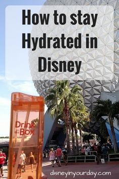 Traveling to Disney and need a way to stay hydrated in the heat and with all of the walking? I've found my solution to get enough water with Drink in the Box!