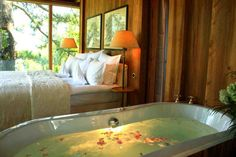 Meisters Hotel Irma - Urlaub im Baumhaus