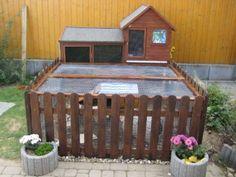 Guniea Pig outside playhouse