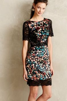 Petal Lace Sheath - perfect for an afterwork function