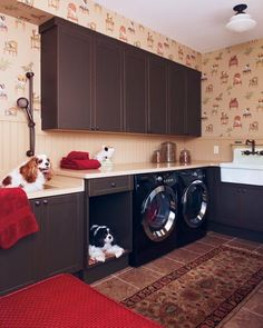 mud room/dog room-Our doggies WILL have something like this one day-I know they will love the dog wash station :)
