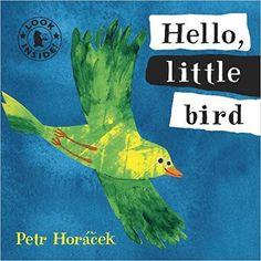 Hello, Little Bird (Look Inside): Amazon.co.uk: Petr Horacek: 9781406325089: Books