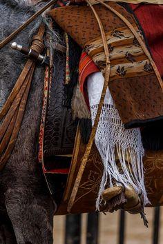 Caronero - foto Daniel Sempé Horse Adventure, Horse Mask, Equestrian Chic, Saddles, Bison, North America, Mexico, Horses, Map