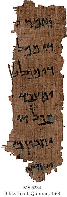 First copy of Nehemiah found in unpublished Dead Sea Scrolls!