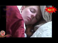 Mischievous Pet Owners Know Wake Up Call *** The Animal World Movie *** .