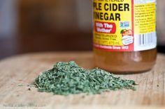 Stinging Nettle Recipes for Spring Eating - Nettle Vinegar & more