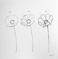 How to easily draw flowers in tree steps! Cool tips by Do you think this is helpful? How to easily draw flowers in tree steps! Cool tips by Do you think this is helpful? How to easily draw flowers in tree steps! Cool tips by Do you think this is helpful? Easy Pencil Drawings, Easy Flower Drawings, Flower Drawing Tutorials, Flower Sketches, Doodle Drawings, Art Drawings Sketches, Doodle Art, Art Tutorials, Easy To Draw Flowers