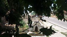 CASTILLO DE BAYUELA (Toledo) - Fuente junto a la carretera (1)