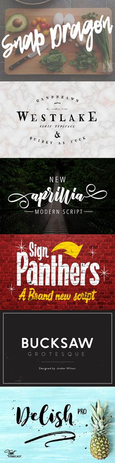 The best new fonts on Creative Market!